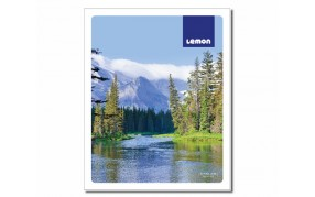 Lemon DC Spl 172 pages Ruled Notebook